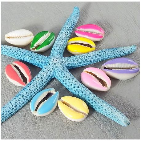 9 perles caurie email couleurs mixtes 20-26mm
